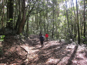 hiking with ecocircuitos
